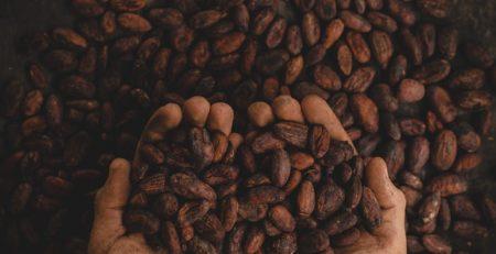 Cioccolato artigianale: cinque miti da sfatare